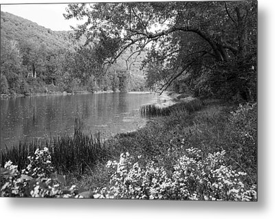 Early Autumn On Route 7 Metal Print by Karol Livote