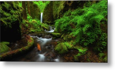 Early Morning At The Grotto Metal Print by Darren White