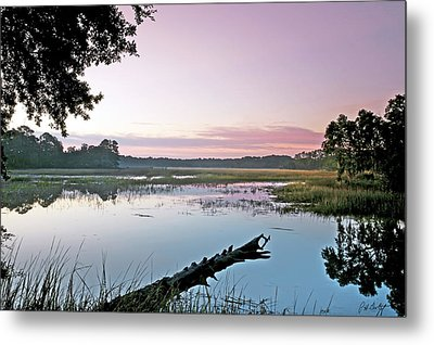 Eastern Morning Metal Print by Phill Doherty