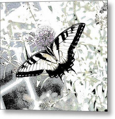 Eastern Tiger Swallowtail Butterfly - Bleached Abstract  Metal Print by Scott D Van Osdol