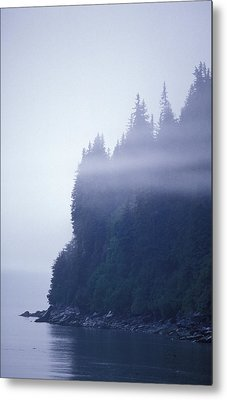 Eerie Seascape With Trees, Cliff Metal Print by Rich Reid