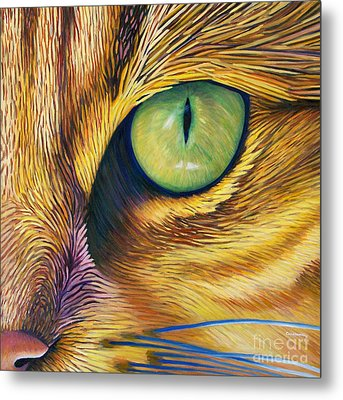 El Gato Metal Print by Brian  Commerford