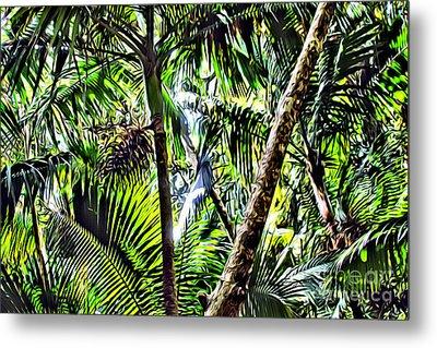 El Yunque Canopy Metal Print by Carey Chen