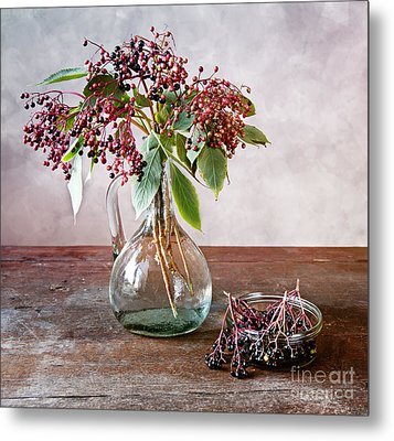 Elderberries 07 Metal Print by Nailia Schwarz
