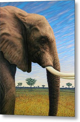 Elephant On Safari Metal Print by James W Johnson