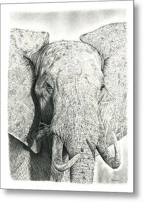 Elephant Metal Print by Remrov
