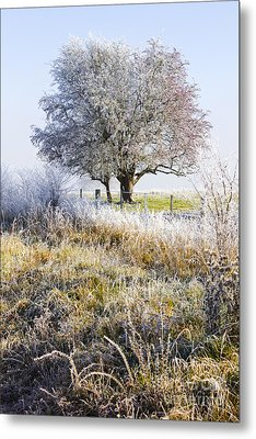 Enchanting Snow Covered Landscape Metal Print by Jorgo Photography - Wall Art Gallery