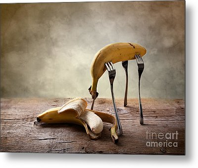 Encounter Metal Print by Nailia Schwarz