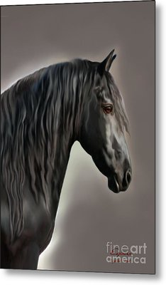 Equus Metal Print by Corey Ford