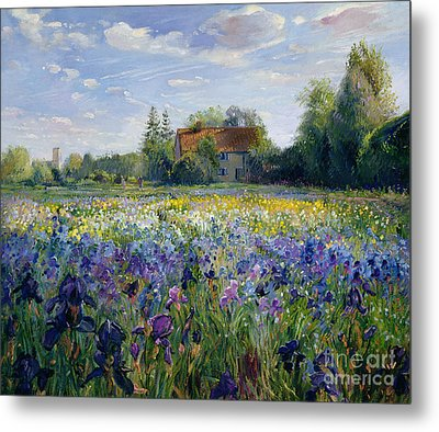 Evening At The Iris Field Metal Print by Timothy Easton