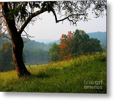 Evening In The Pasture Metal Print by Thomas R Fletcher