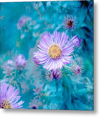Every Good Gift Metal Print by Bonnie Bruno