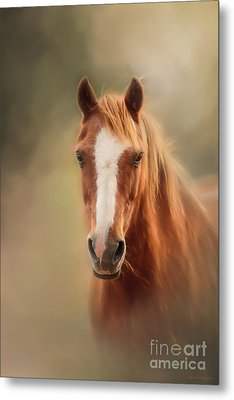Everyone's Favourite Pony Metal Print by Michelle Wrighton