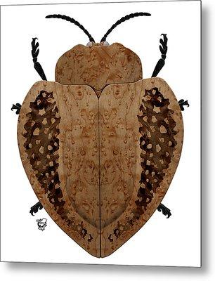Exotic Wood Tortoise Beetle Metal Print by Stephen Kinsey