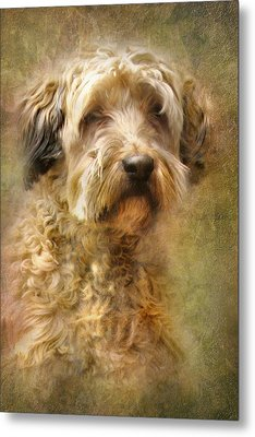 Expression Metal Print by Trudi Simmonds