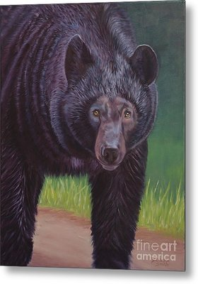 Eye To Eye - Black Bear Metal Print by Danielle Smith