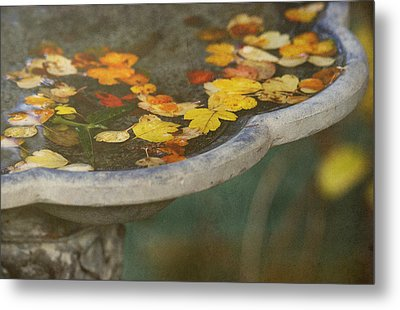 Fall Offering Metal Print by Rebecca Cozart