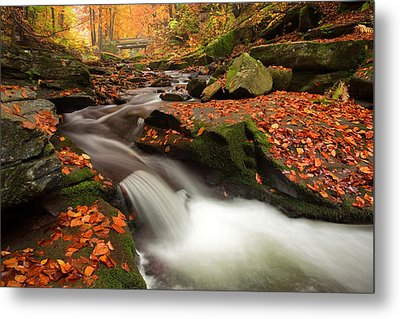 Fall Power Metal Print by Evgeni Dinev
