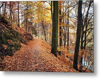 Fall Road Along The Lake Metal Print by Jenny Rainbow