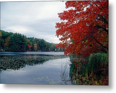 Fall Scenic Little Long Pond Harriman State Park New Metal Print by George Oze