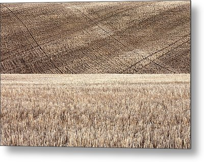 Fallow Field Metal Print by Todd Klassy