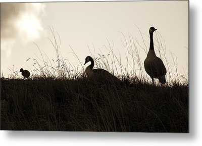 Family Time Metal Print by Marilyn Hunt
