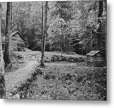 Fantasy Forest In Black And White Metal Print by DigiArt Diaries by Vicky B Fuller