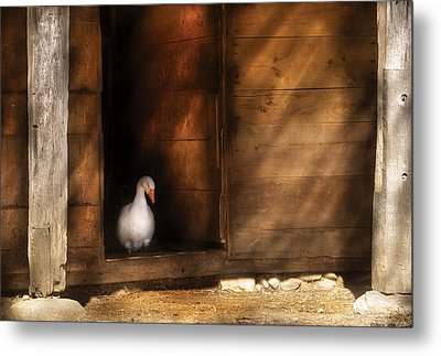 Farm - Duck - Welcome To My Home  Metal Print by Mike Savad