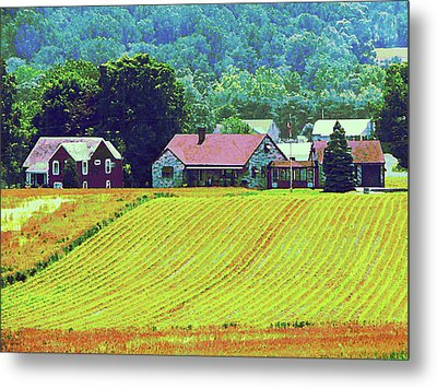 Farm Homestead Metal Print by Susan Savad