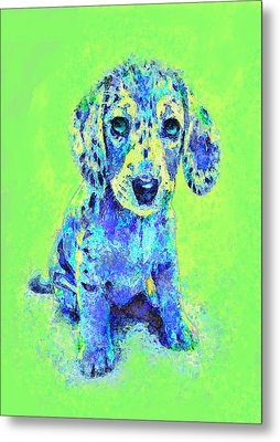 Green And Blue Dachshund Puppy Metal Print by Jane Schnetlage