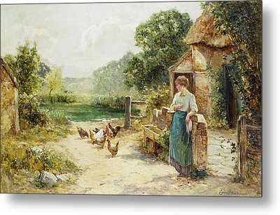 Feeding Time Metal Print by Ernest Walbourn