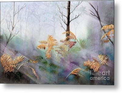 Ferns In The Forest Metal Print by Kim Hamilton