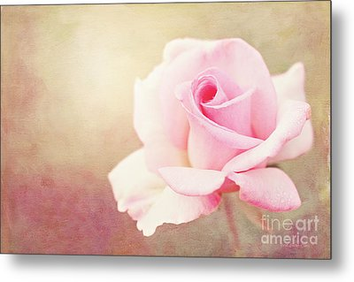 Fidelity Metal Print by Beve Brown-Clark Photography
