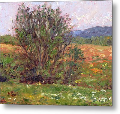 Field In Spring Metal Print by Michael Camp