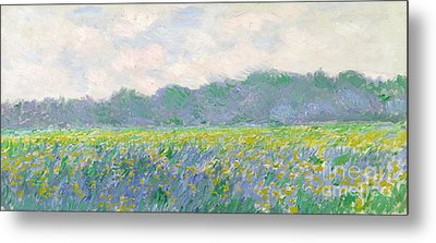 Field Of Yellow Irises At Giverny Metal Print by Claude Monet