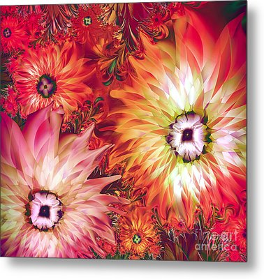 Fire Asters Metal Print by Mindy Sommers