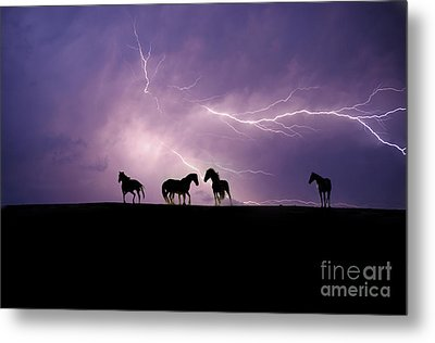 Fire Storm Metal Print by Lisa Dearing