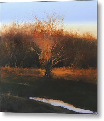 Fire Tree 2 Metal Print by Cap Pannell