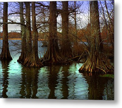 First Rays At Reelfoot Metal Print by Julie Dant