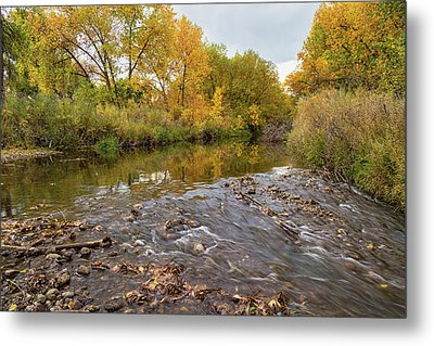 Fishing Stream View Metal Print by James BO Insogna