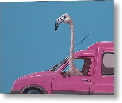 Flamingo Metal Print by Jasper Oostland