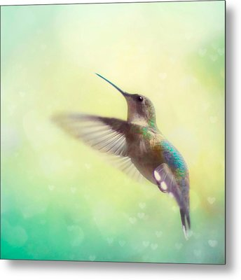 Flight Of Fancy - Square Version Metal Print by Amy Tyler