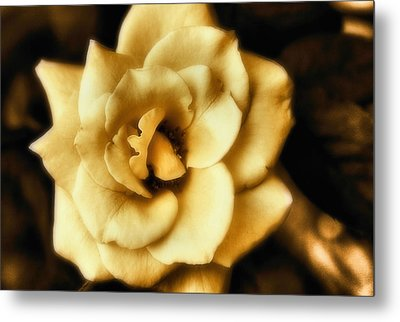 Flower Metal Print by Gulf Island Photography and Images