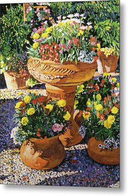 Flower Pots In Sunlight Metal Print by David Lloyd Glover