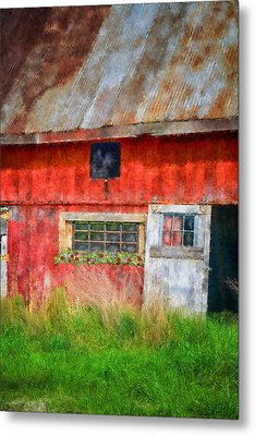Flower Shed Metal Print by Mary Timman