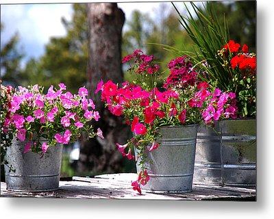 Flower Wagon Metal Print by Susanne Van Hulst