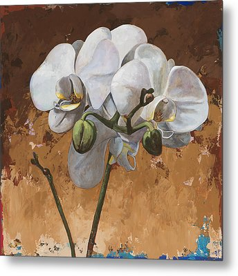 Flowers #7 Metal Print by David Palmer