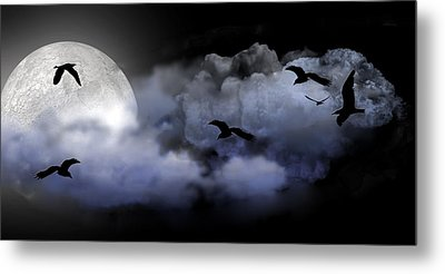 Fly By Night Metal Print by Evelyn Patrick