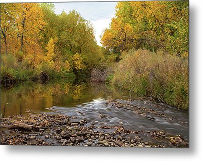 Fly Fishermans Paradise Metal Print by James BO Insogna