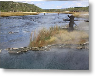 Fly Fishing And Geyser  Metal Print by Gayle Johnson